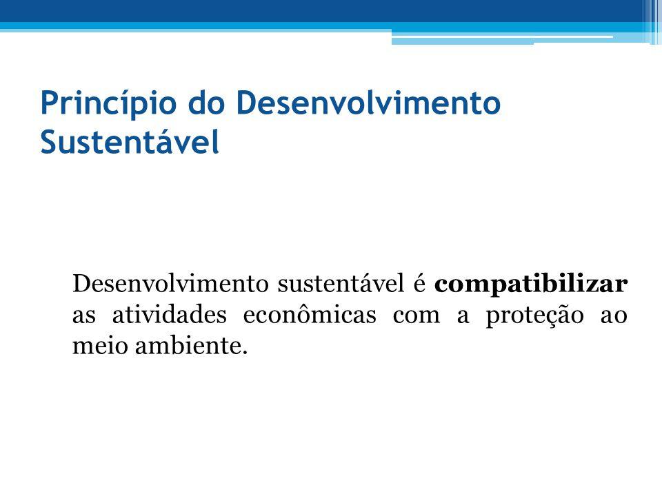 Princípio do Desenvolvimento Sustentável