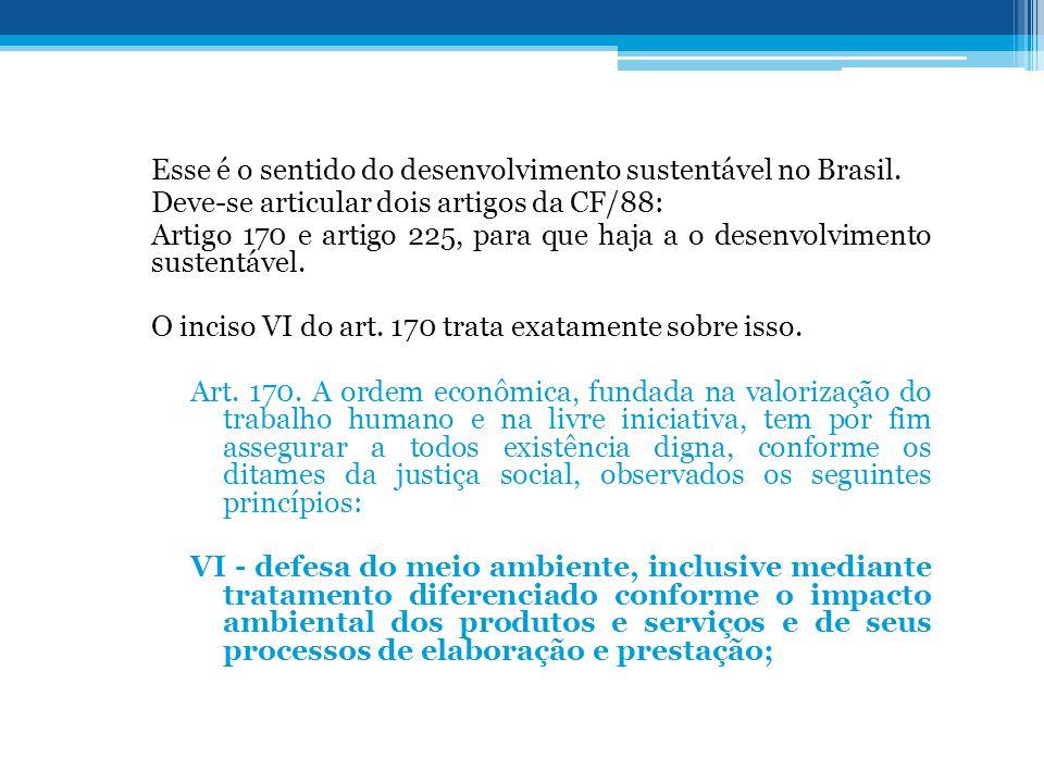 Esse é o sentido do desenvolvimento sustentável no Brasil.
