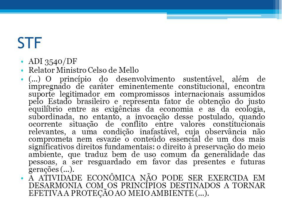 STF ADI 3540/DF Relator Ministro Celso de Mello