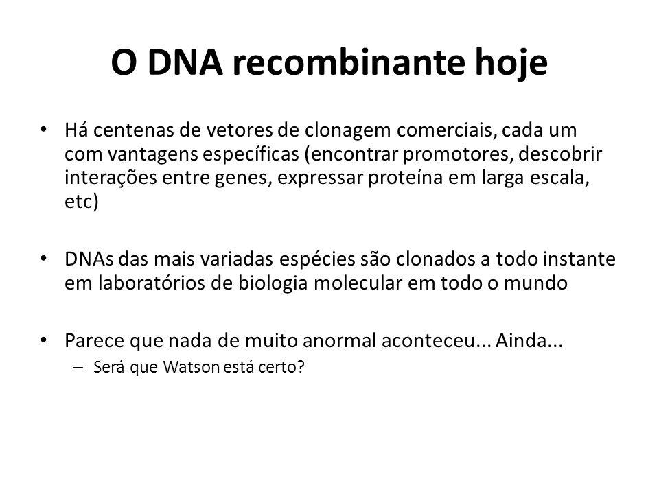 O DNA recombinante hoje