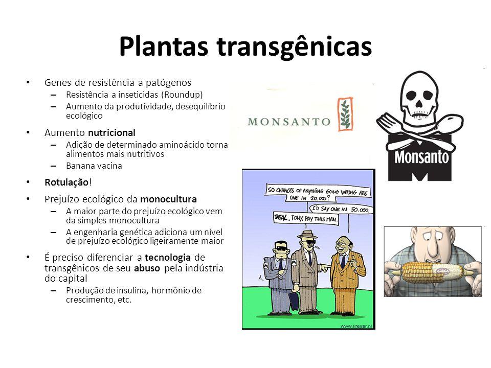 Plantas transgênicas Genes de resistência a patógenos