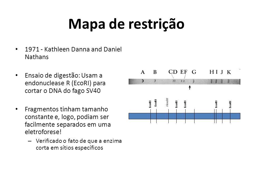 Mapa de restrição 1971 - Kathleen Danna and Daniel Nathans