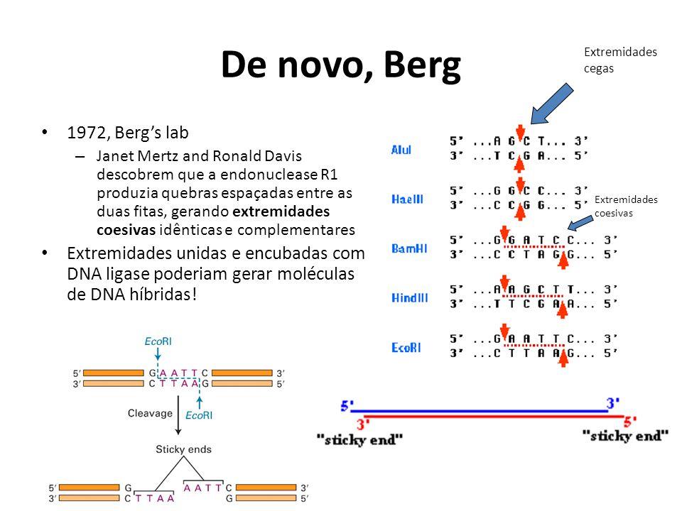 De novo, Berg Extremidades cegas. 1972, Berg's lab.