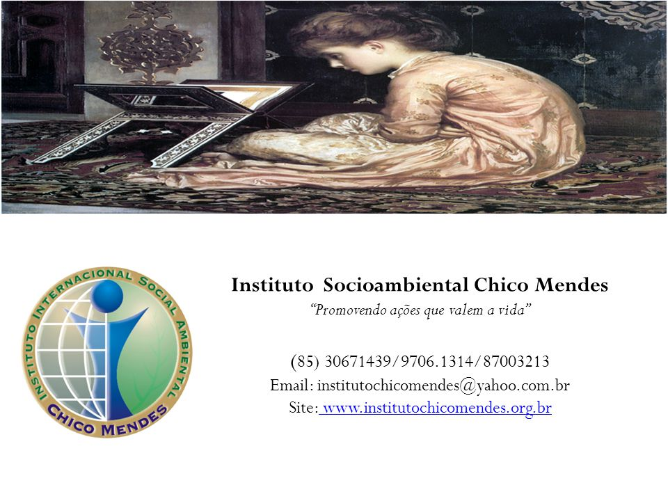 Instituto Socioambiental Chico Mendes