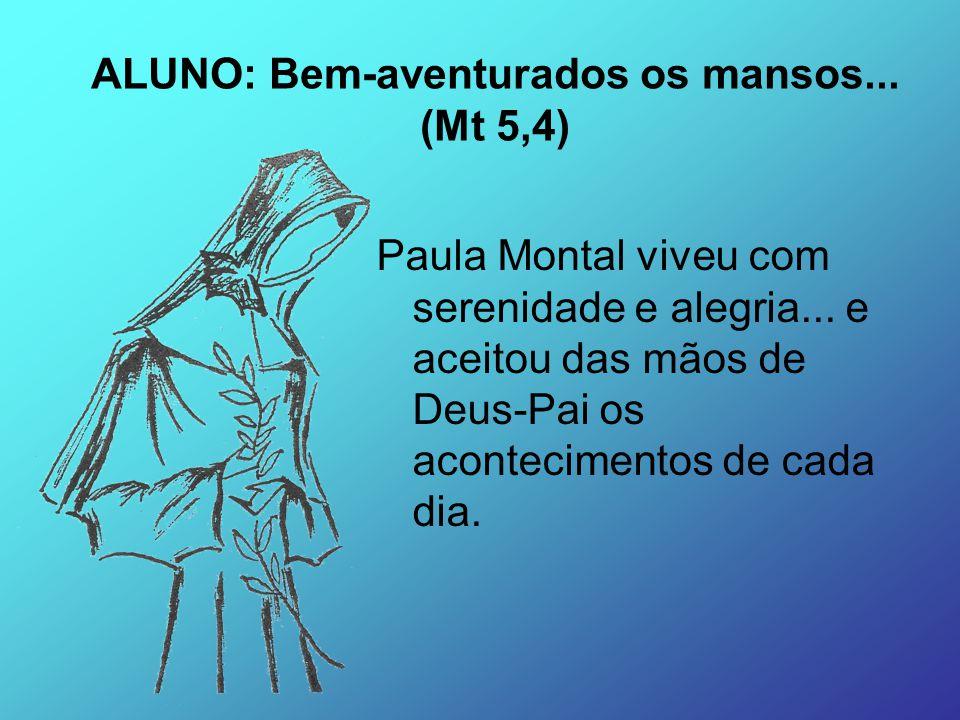 ALUNO: Bem-aventurados os mansos... (Mt 5,4)