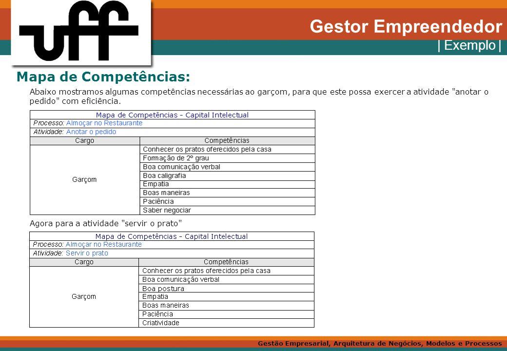 Gestor Empreendedor | Exemplo | Mapa de Competências: