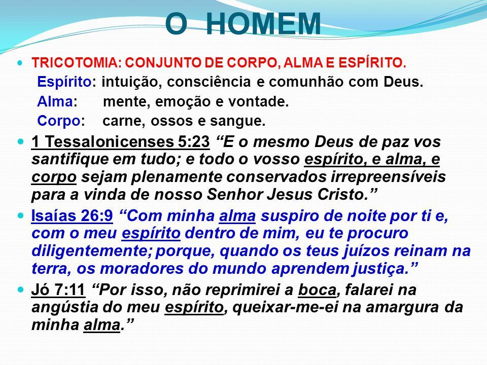 O HOMEM TRICOTOMIA: CONJUNTO DE CORPO, ALMA E ESPÍRITO. Espírito: intuição, consciência e comunhão com Deus.
