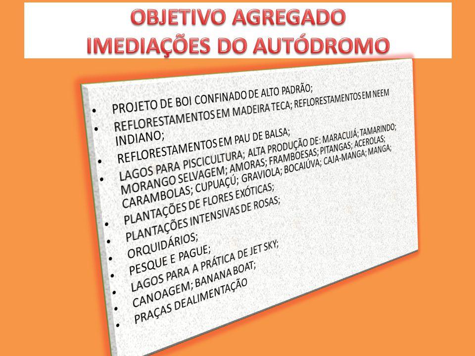 OBJETIVO AGREGADO IMEDIAÇÕES DO AUTÓDROMO