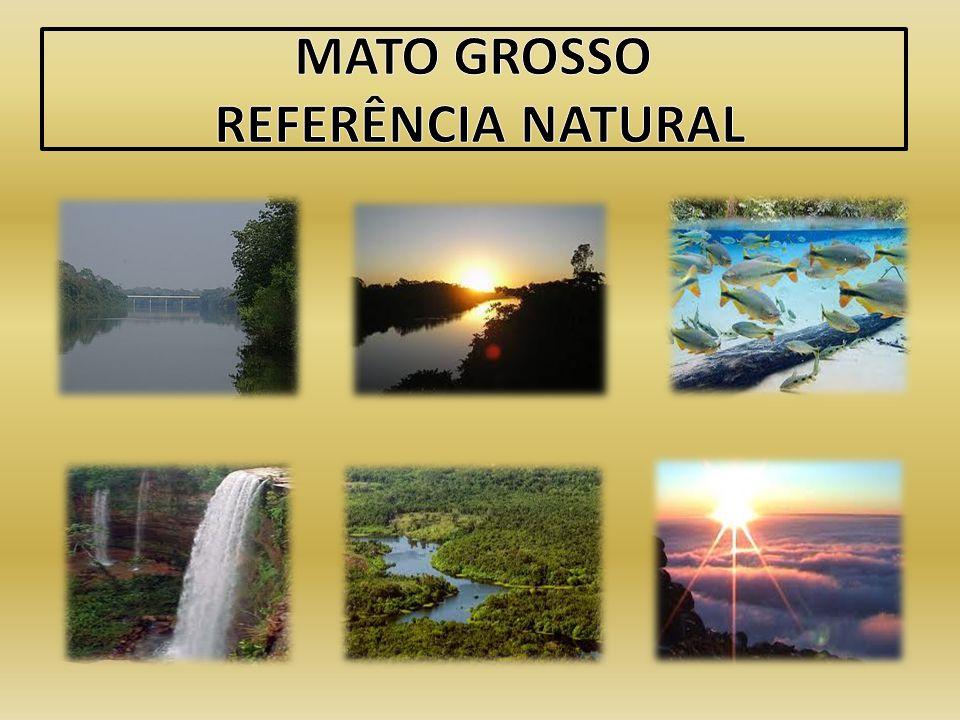 MATO GROSSO REFERÊNCIA NATURAL