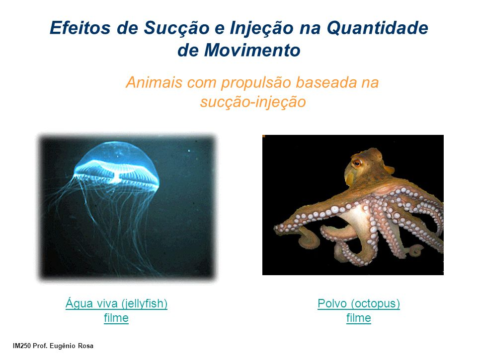 Animais com propulsão baseada na sucção-injeção