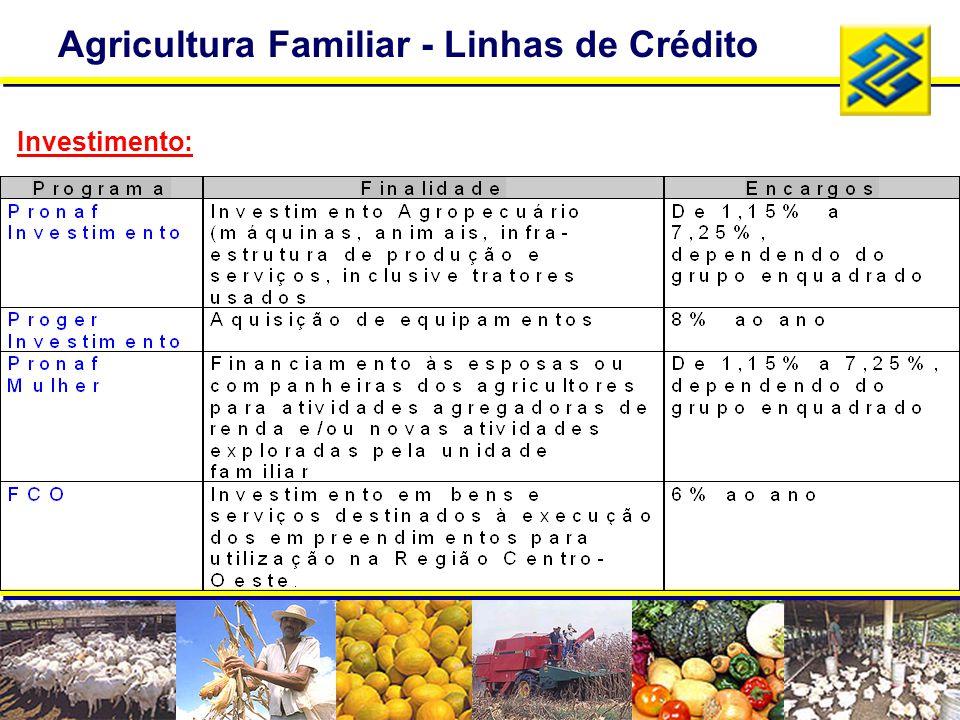 Agricultura Familiar - Linhas de Crédito