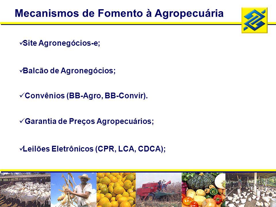 Mecanismos de Fomento à Agropecuária