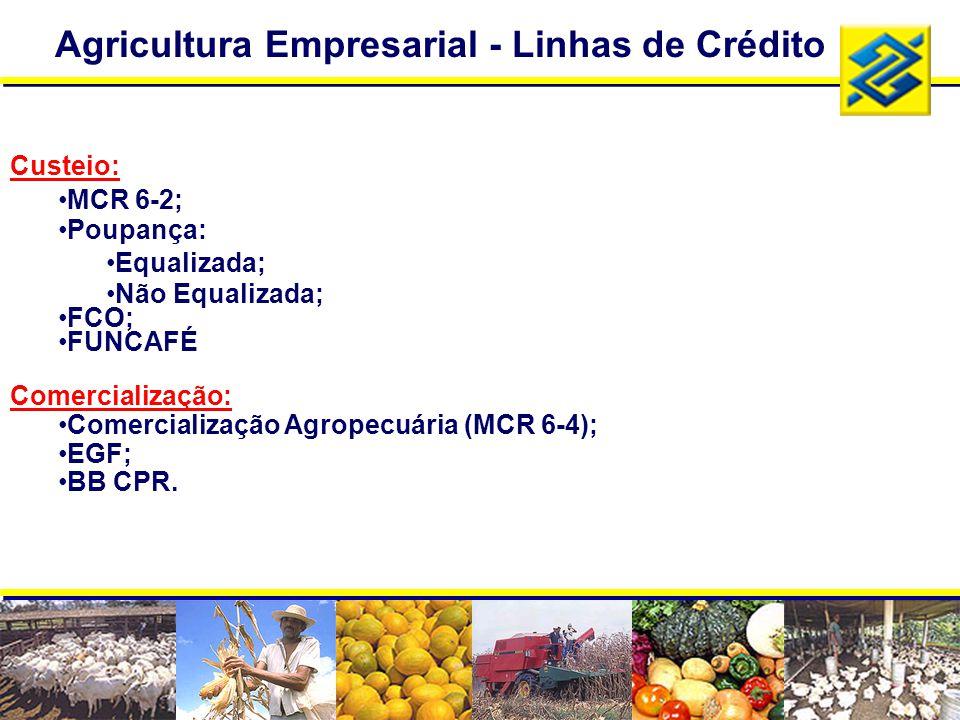 Agricultura Empresarial - Linhas de Crédito
