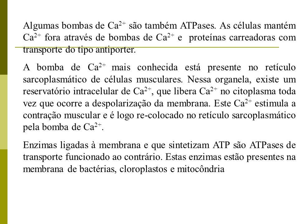 Algumas bombas de Ca2+ são também ATPases