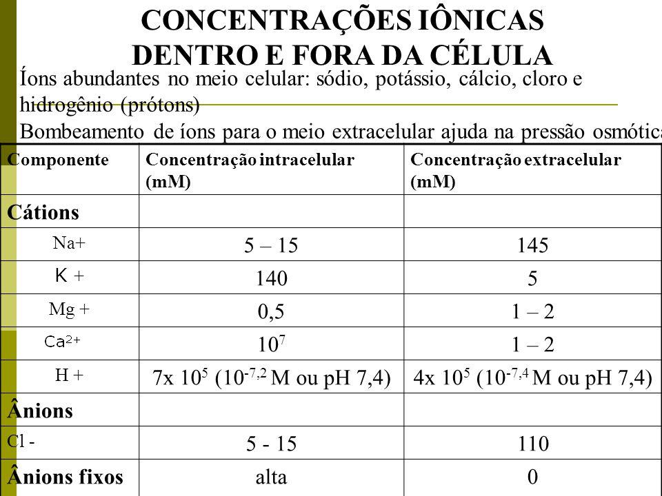 CONCENTRAÇÕES IÔNICAS