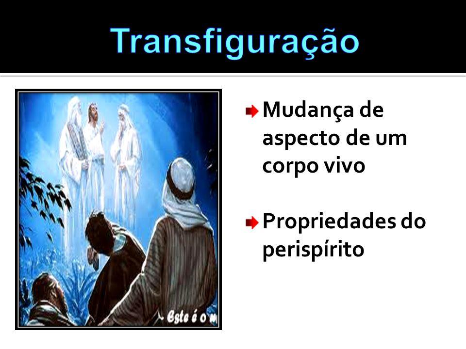 Transfiguração Mudança de aspecto de um corpo vivo