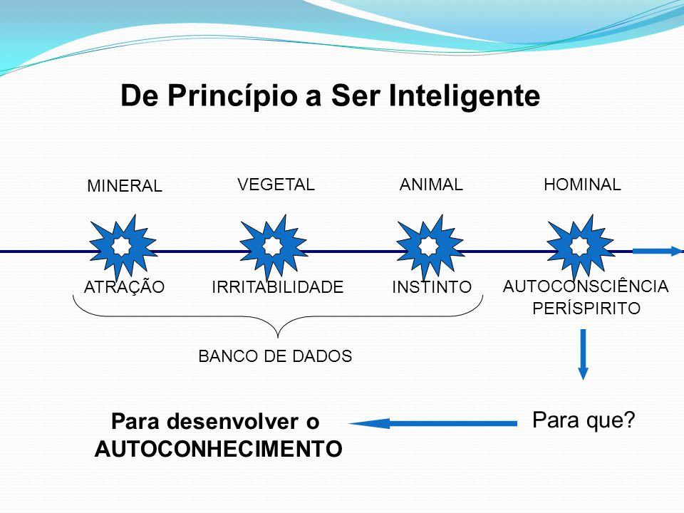 De Princípio a Ser Inteligente