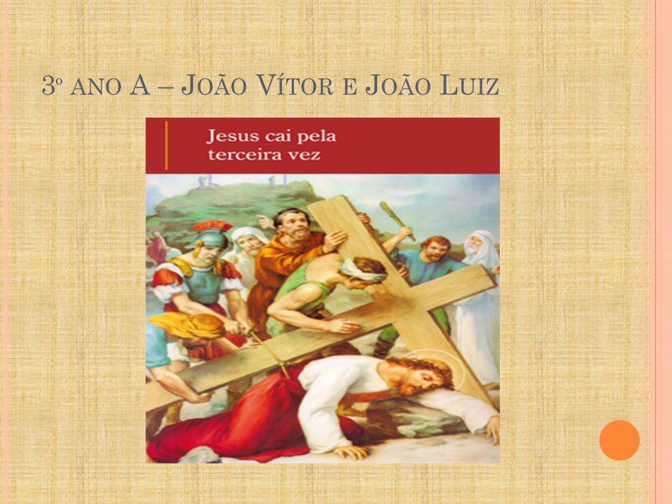 3º ano A – João Vítor e João Luiz