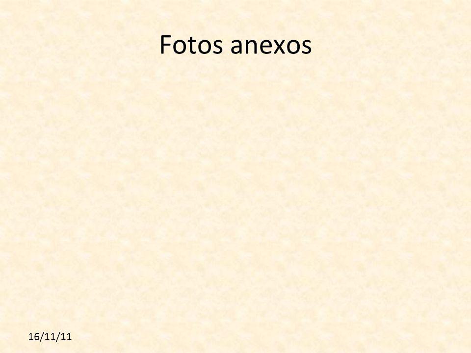 Fotos anexos 16/11/11