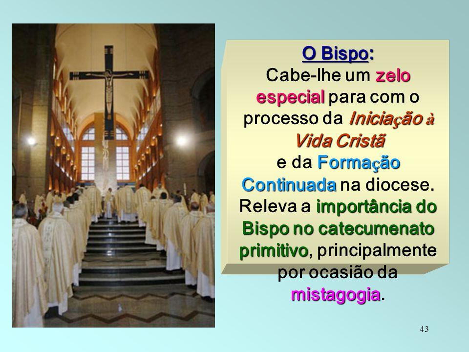 e da Formação Continuada na diocese.