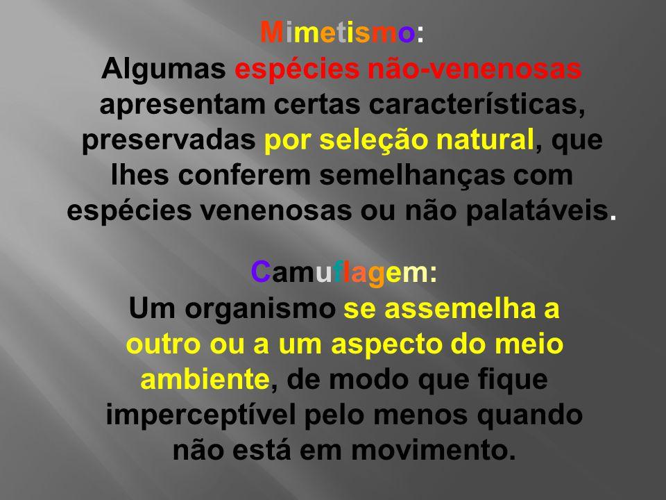 Mimetismo: