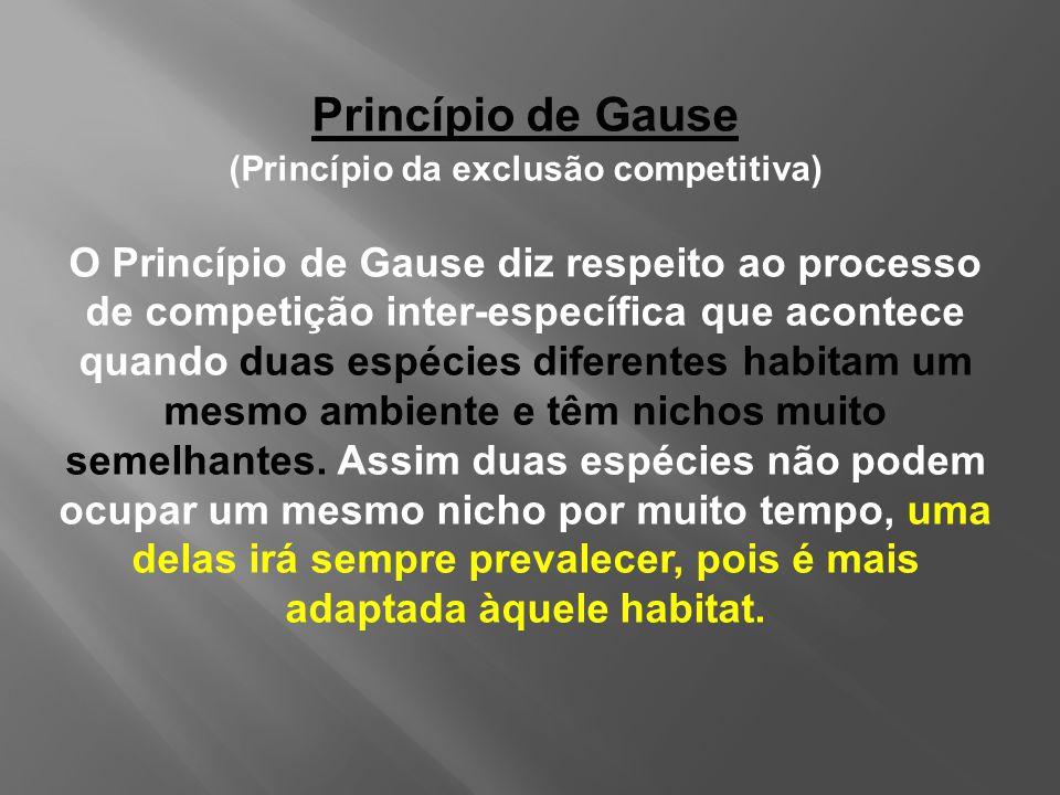 (Princípio da exclusão competitiva)