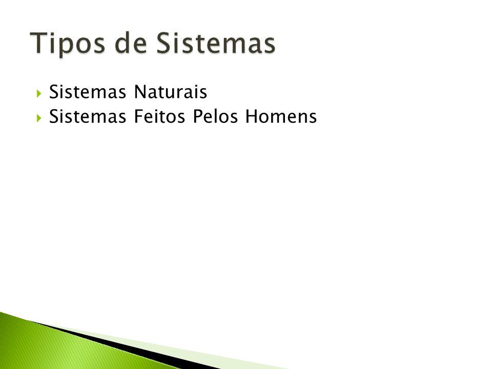 Tipos de Sistemas Sistemas Naturais Sistemas Feitos Pelos Homens