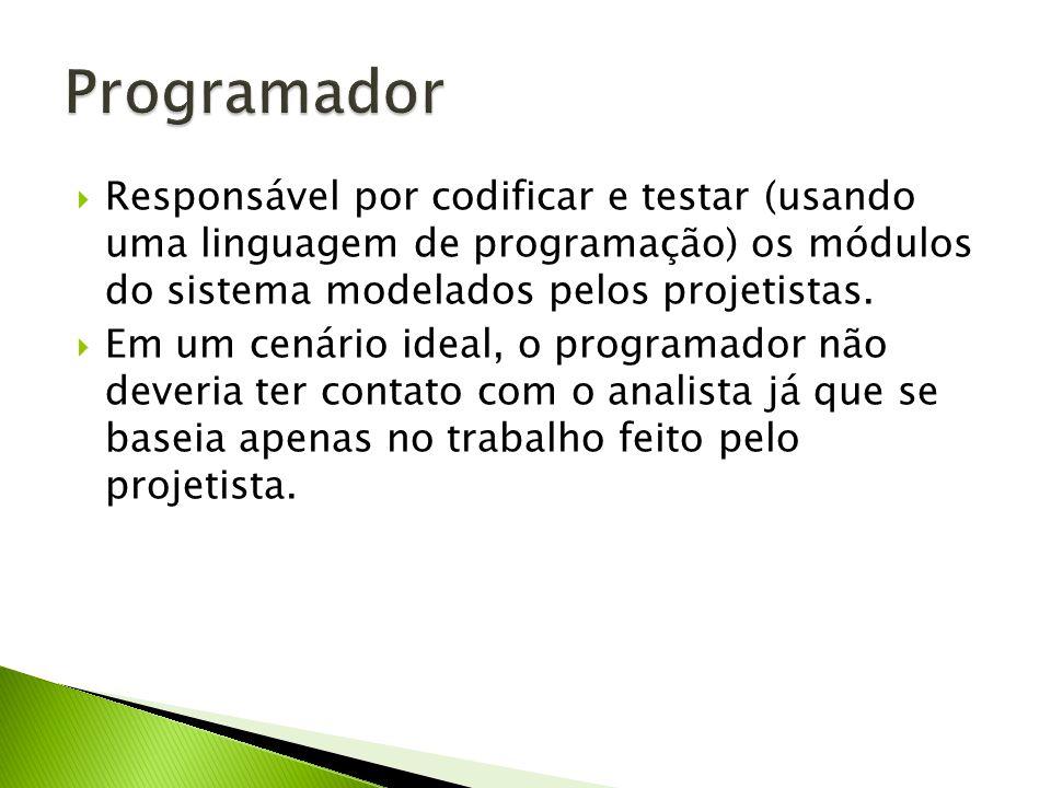 Programador Responsável por codificar e testar (usando uma linguagem de programação) os módulos do sistema modelados pelos projetistas.