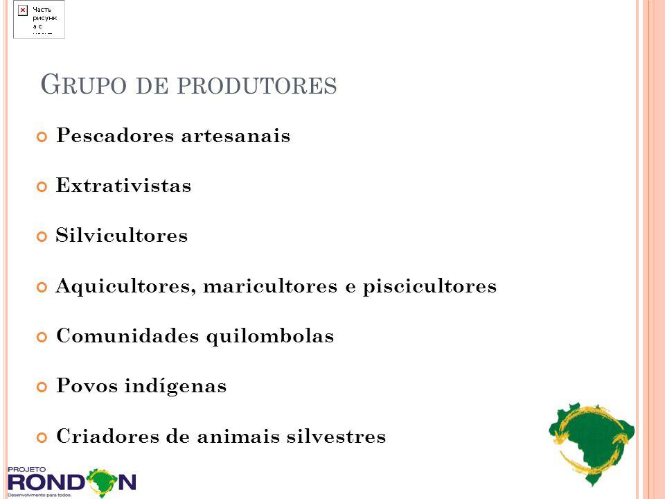 Grupo de produtores Pescadores artesanais Extrativistas Silvicultores