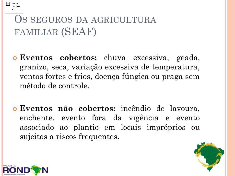 Os seguros da agricultura familiar (SEAF)