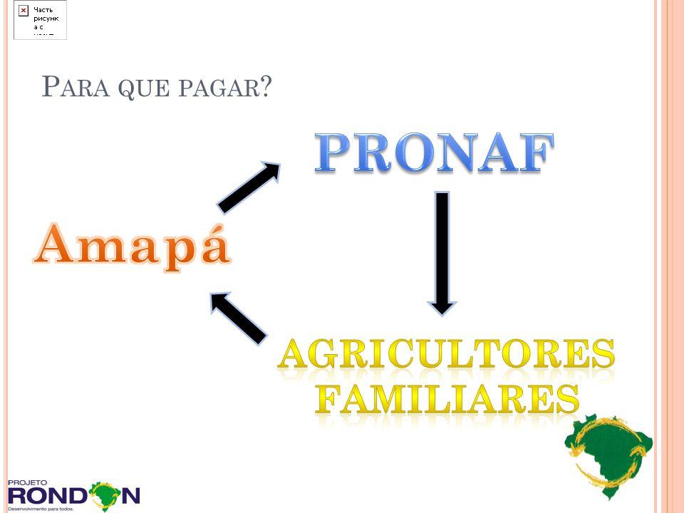 Para que pagar PRONAF Amapá Agricultores Familiares