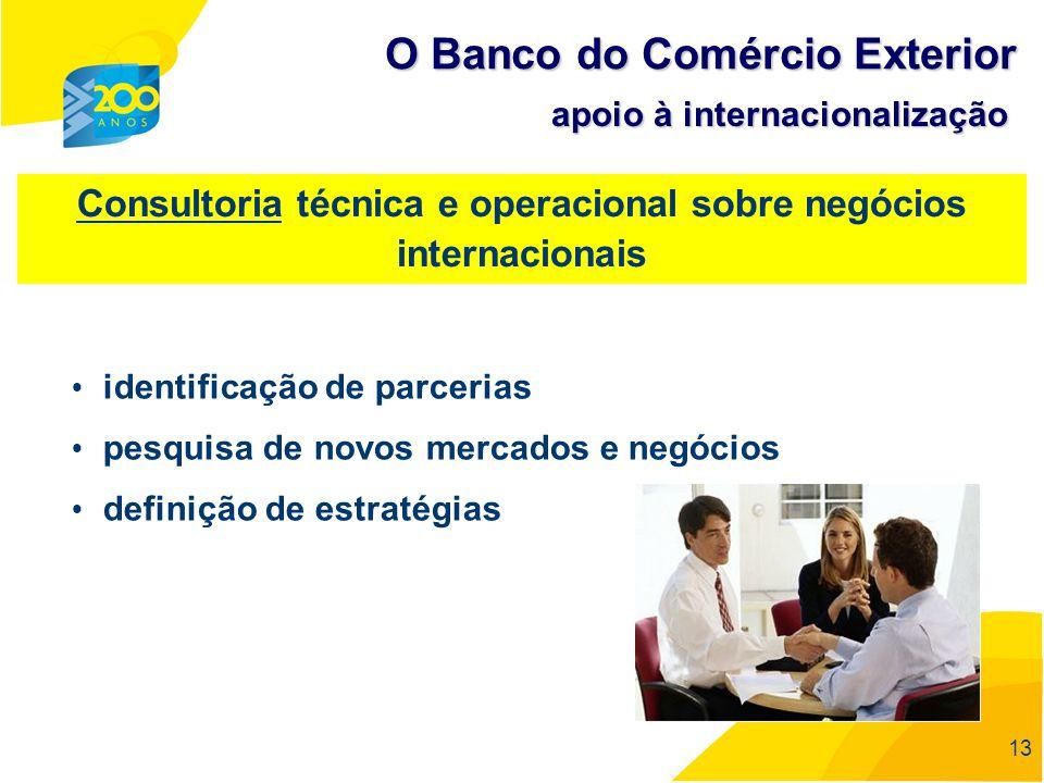 Consultoria técnica e operacional sobre negócios internacionais