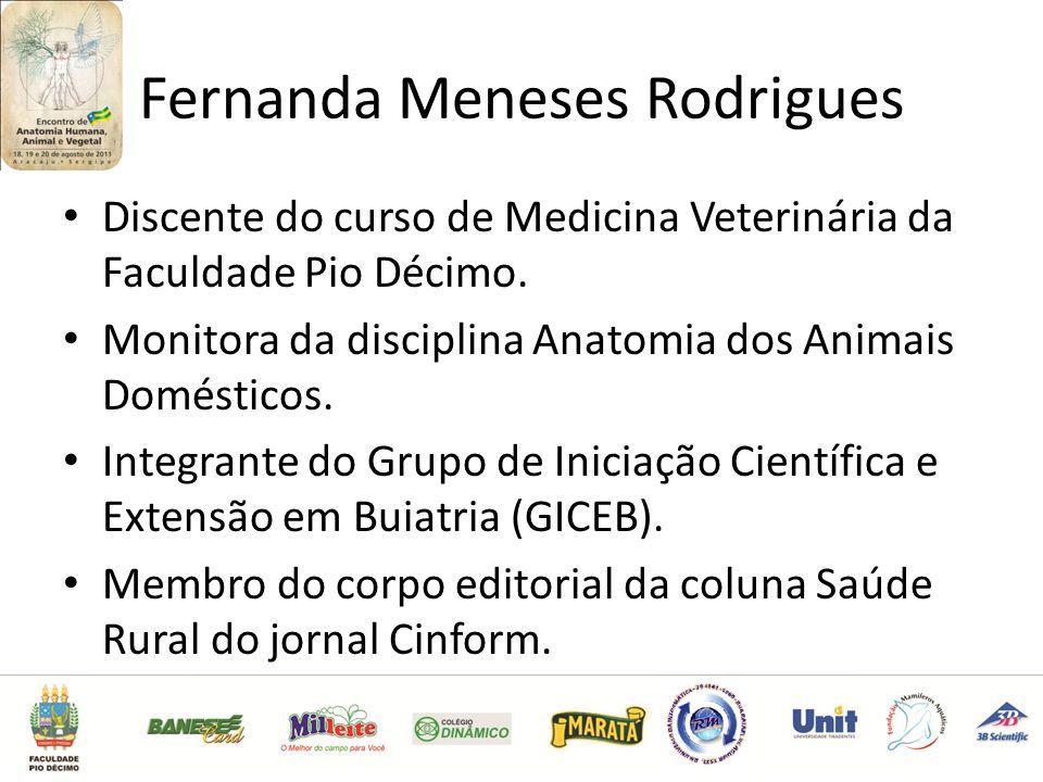 Fernanda Meneses Rodrigues