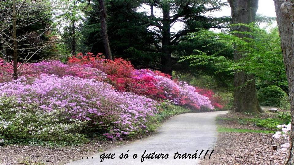 ... que só o futuro trará!!!