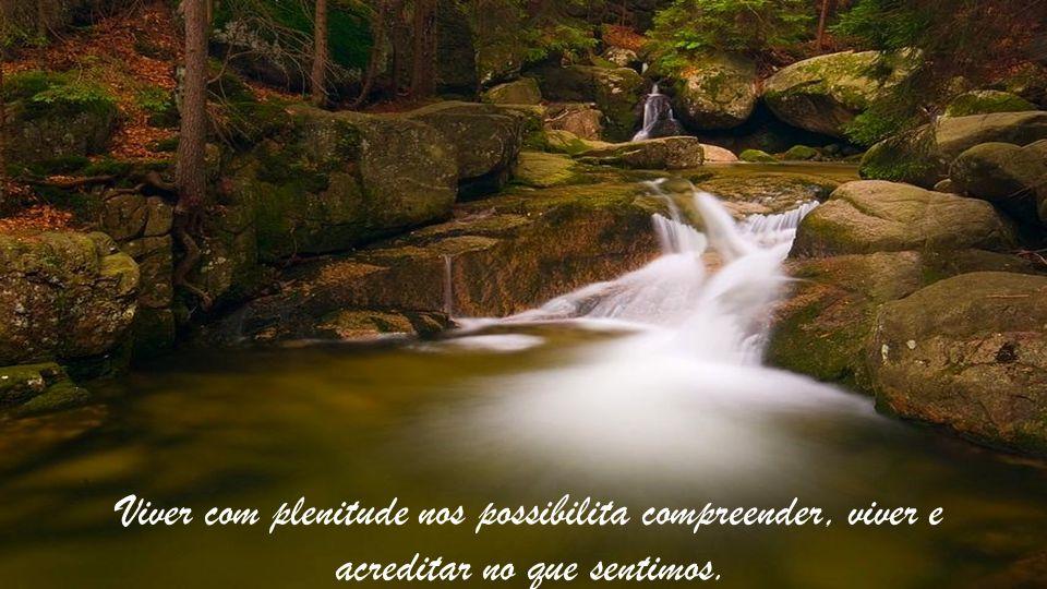 Viver com plenitude nos possibilita compreender, viver e acreditar no que sentimos.