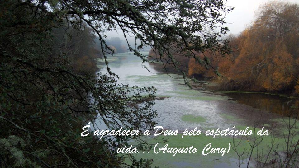 .É agradecer a Deus pelo espetáculo da vida...(Augusto Cury)