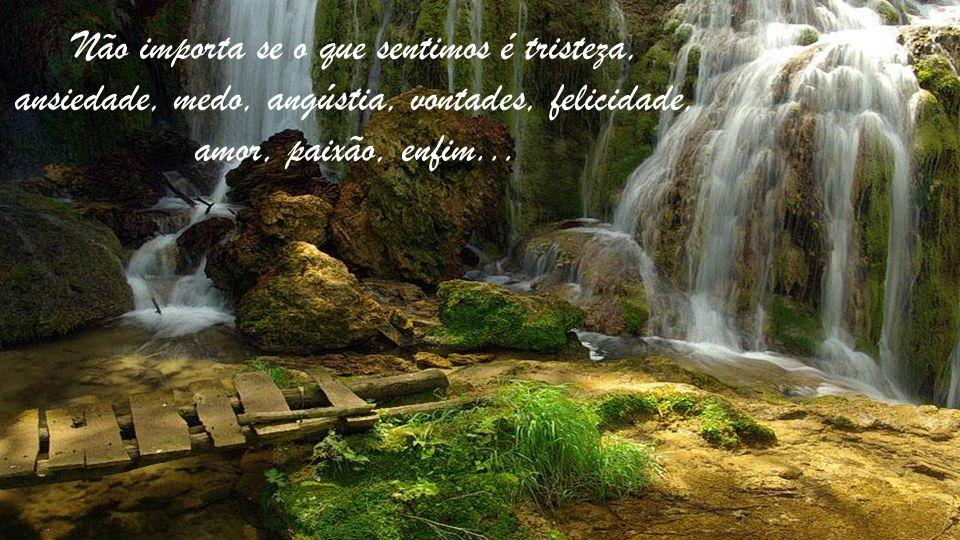 Não importa se o que sentimos é tristeza, ansiedade, medo, angústia, vontades, felicidade, amor, paixão, enfim...