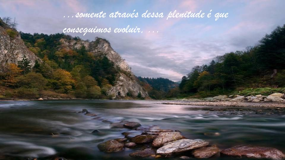 ...somente através dessa plenitude é que conseguimos evoluir, ...