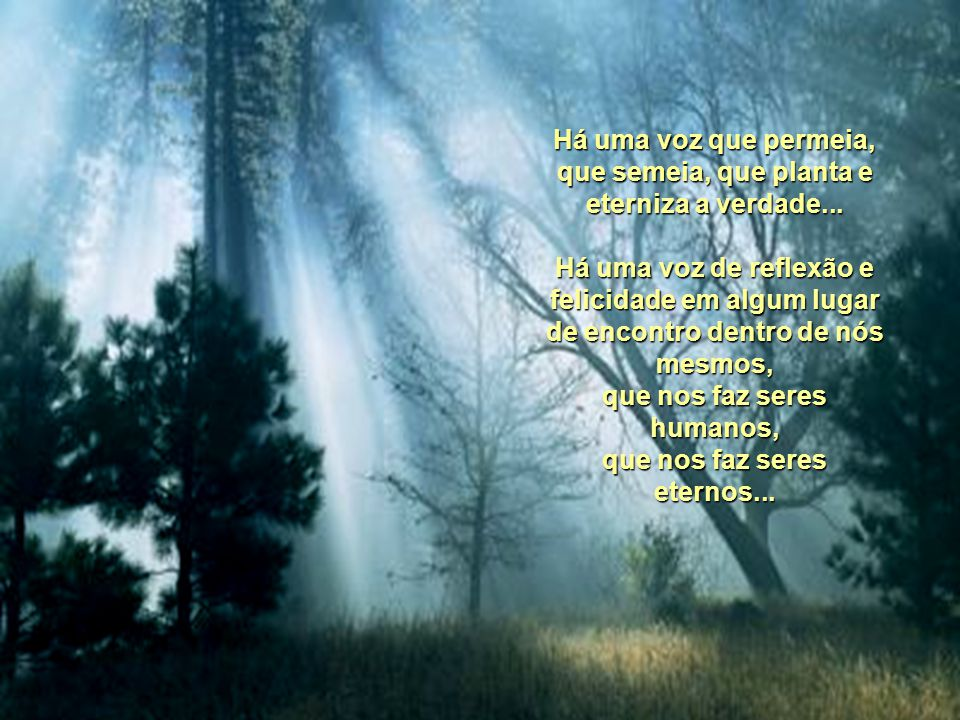 Há uma voz que permeia, que semeia, que planta e eterniza a verdade...