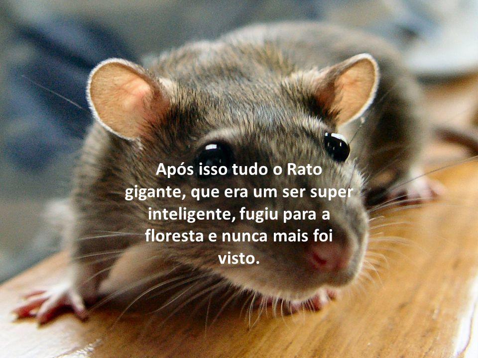 Após isso tudo o Rato gigante, que era um ser super inteligente, fugiu para a floresta e nunca mais foi visto.