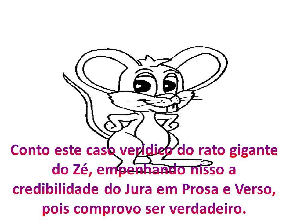 Conto este caso verídico do rato gigante do Zé, empenhando nisso a credibilidade do Jura em Prosa e Verso, pois comprovo ser verdadeiro.