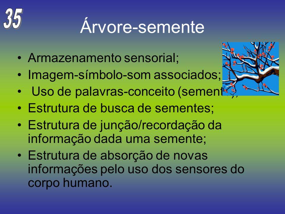 Árvore-semente 35 Armazenamento sensorial;
