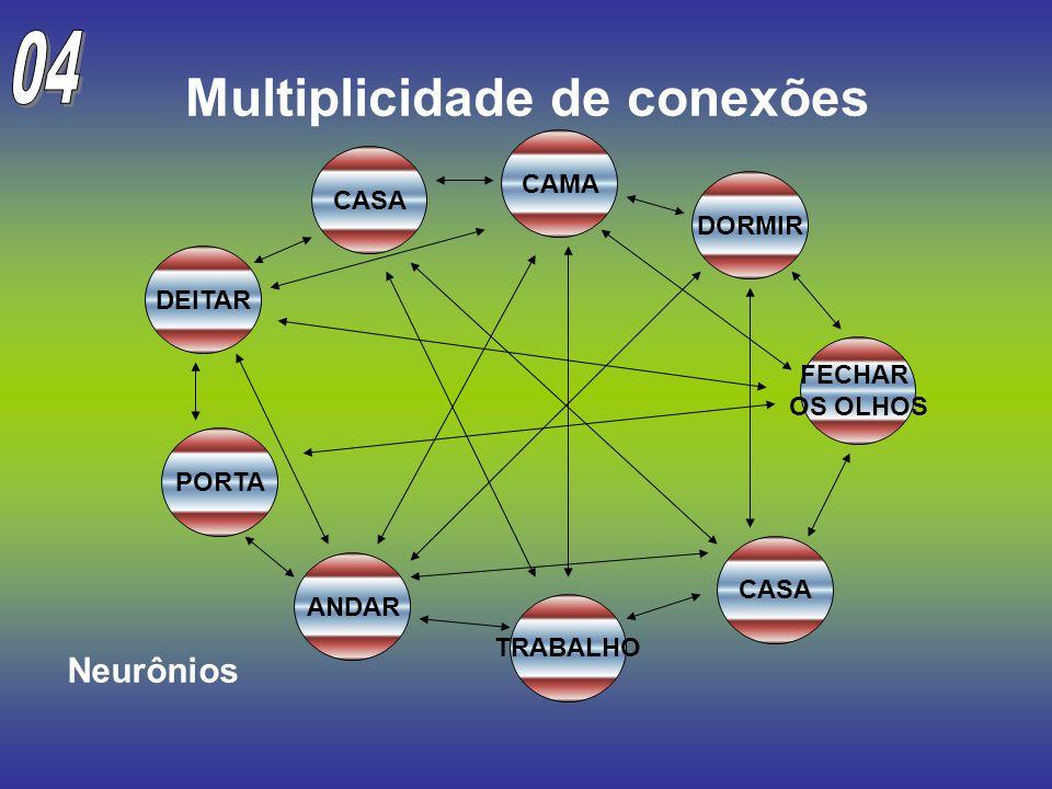 Multiplicidade de conexões