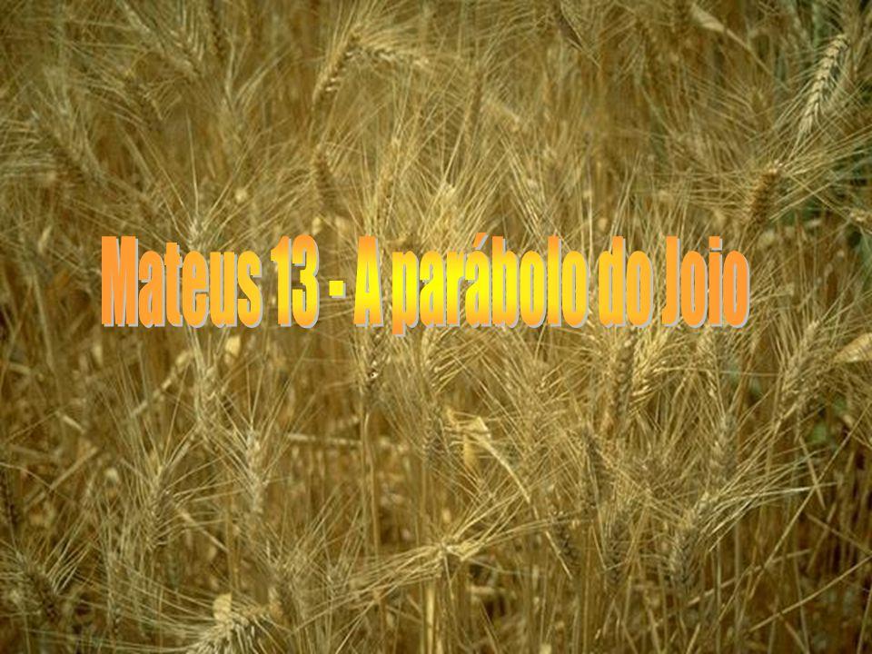Mateus 13 - A parábolo do Joio