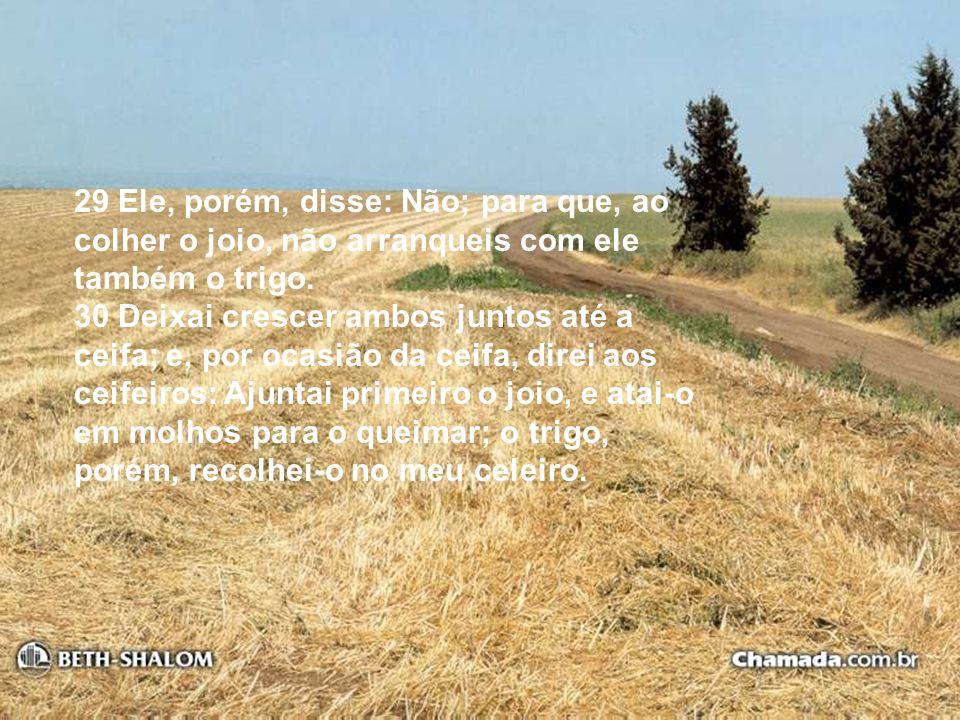 29 Ele, porém, disse: Não; para que, ao colher o joio, não arranqueis com ele também o trigo.
