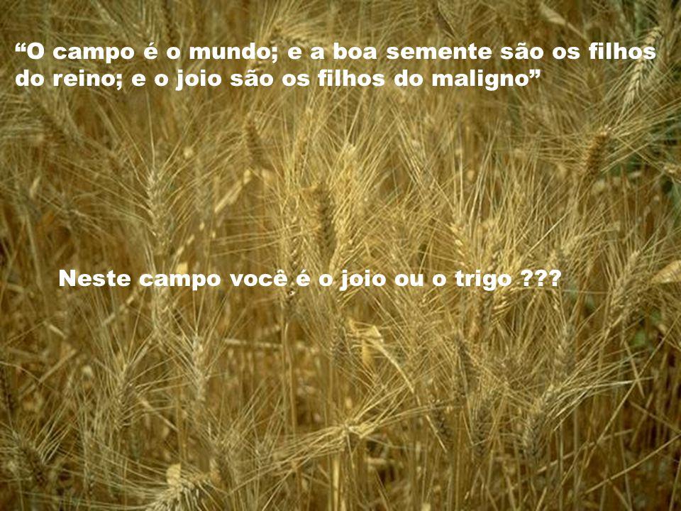 O campo é o mundo; e a boa semente são os filhos do reino; e o joio são os filhos do maligno