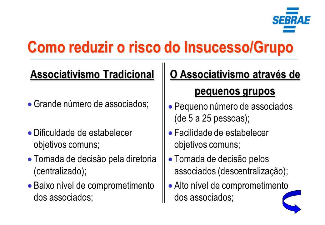 Como reduzir o risco do Insucesso/Grupo