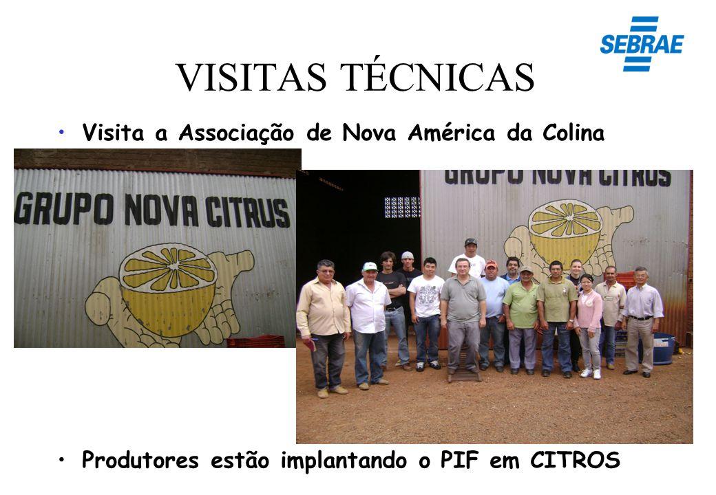 VISITAS TÉCNICAS Visita a Associação de Nova América da Colina