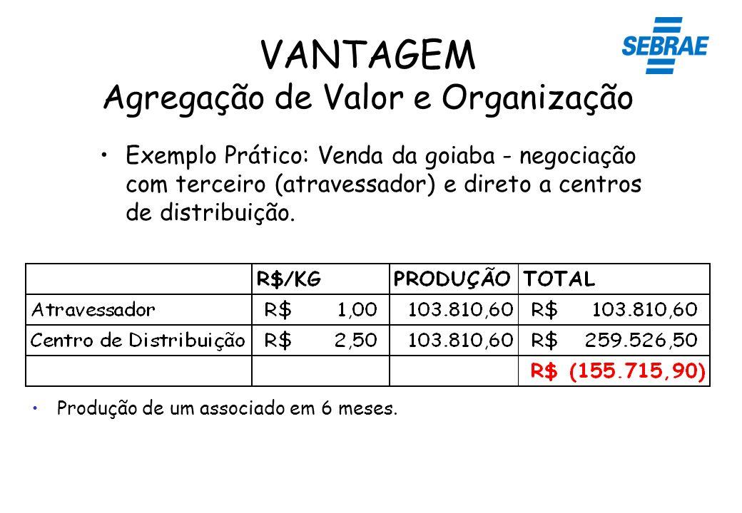 VANTAGEM Agregação de Valor e Organização