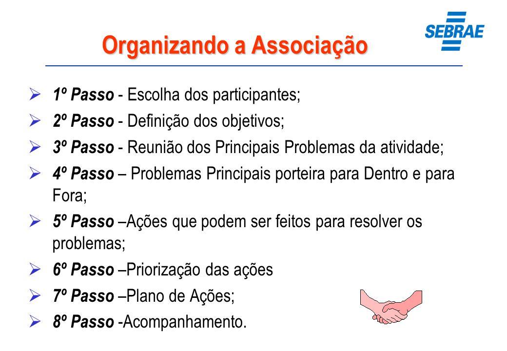 Organizando a Associação